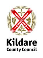 Public website for reporting street lighting faults - Kildare