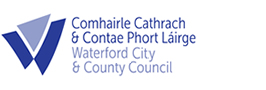 Public website for reporting street lighting faults - Waterford