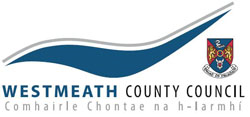 Public website for reporting street lighting faults - Westmeath